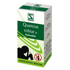 QUERCUS ROBUR 1X TABLET [ WSI ]